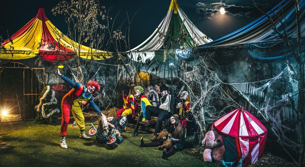 Перформанс Не тот цирк в Москве фото 2