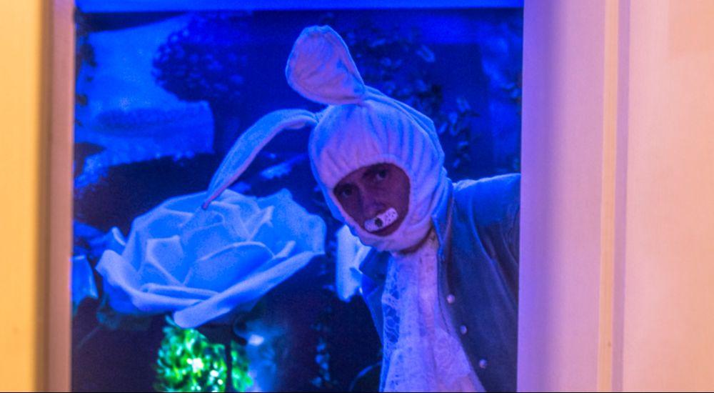 Перформанс Следуй за Белым Кроликом в Краснодаре фото 2