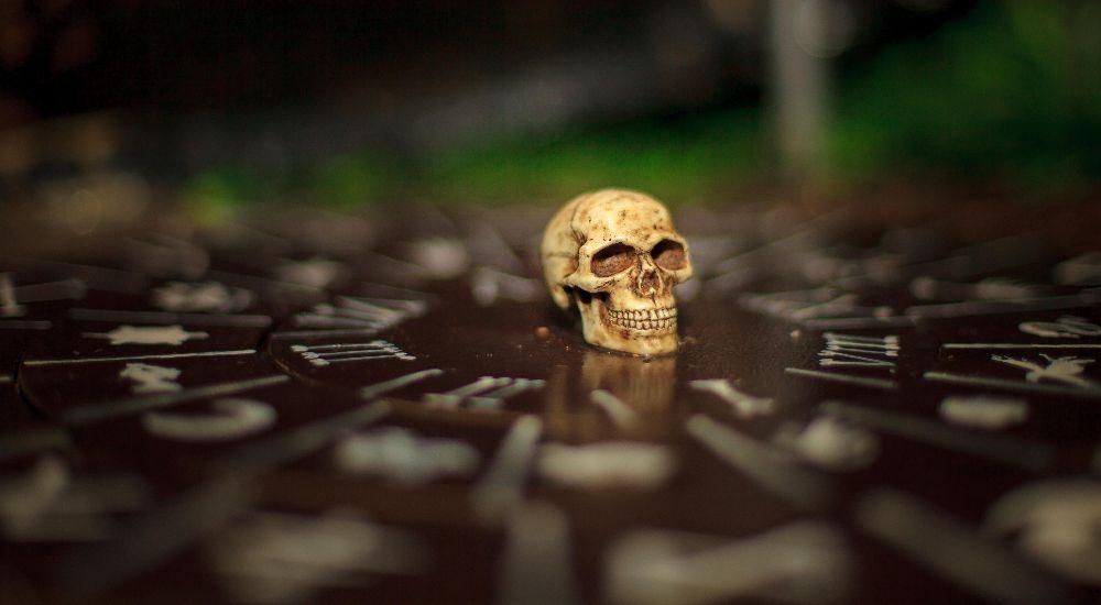 Квест Остров сокровищ: золото капитана Моргана в Калуге фото 5
